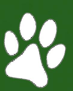 hundepfote-weiss-gruen